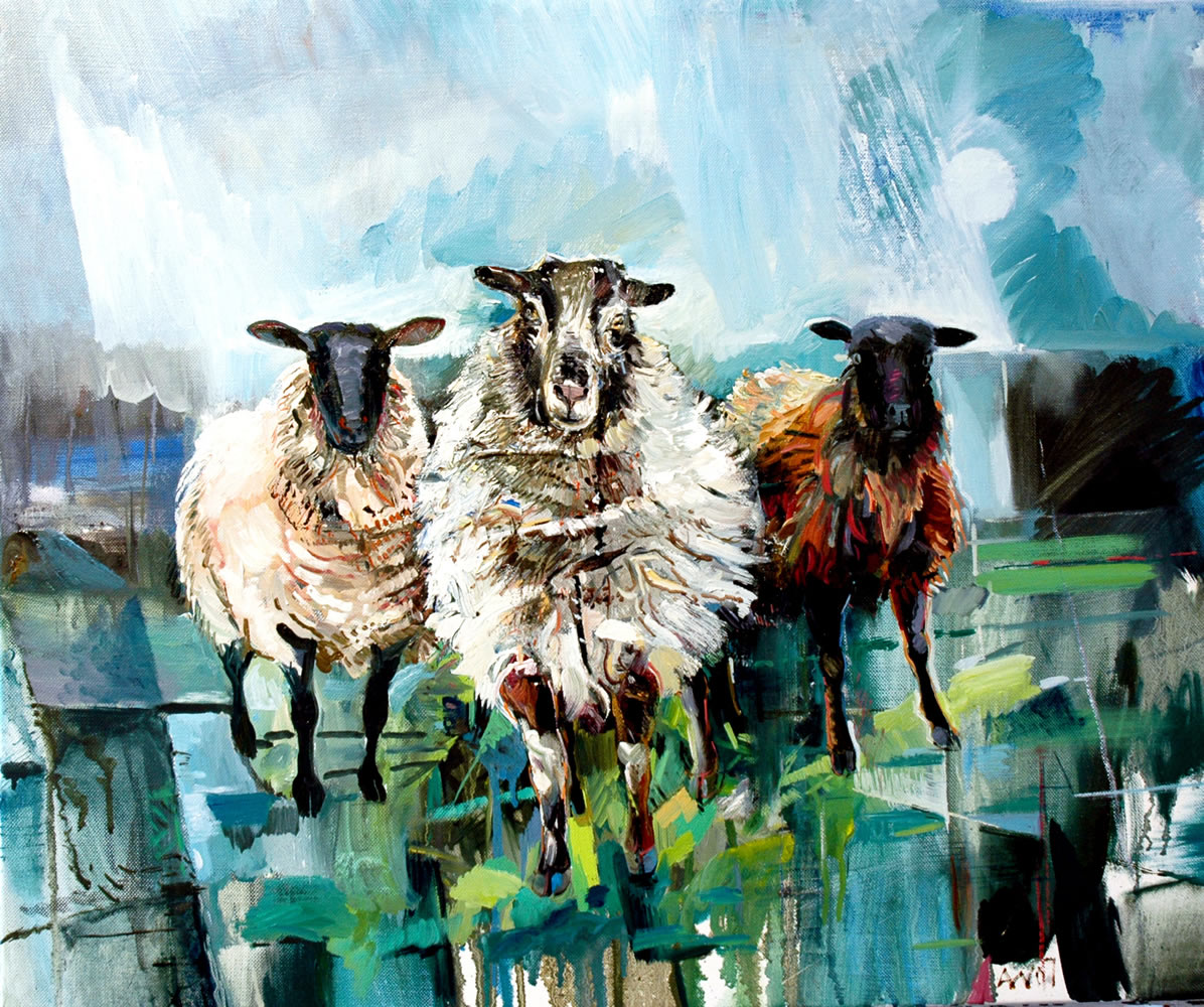 Three Ewes